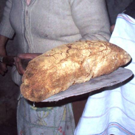 Bread (and mother) of life